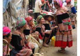 Coc Li Market
