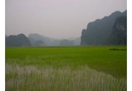 Cuc Phuong National Park - Kenh Ga - Hoa Lu